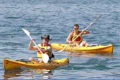 Manly Kayaks - Attractions Perth