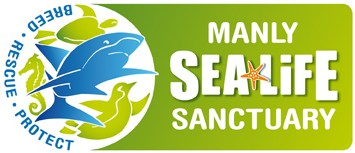 Manly SEA LIFE Sanctuary - Attractions Perth