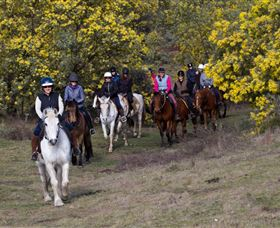 Burnelee Excursions on Horseback - Attractions Perth