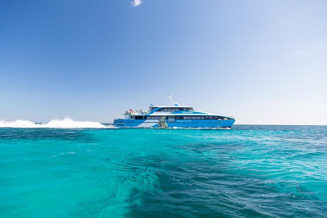 Fremantle to Rottnest Island Roundtrip Ferry Ticket - Attractions Perth