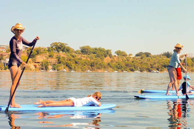 Stand-Up Paddleboarding Lesson plus Guided Paddle on Perth's Swan River - Attractions Perth