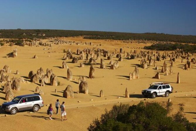 1-Day Pinnacles And Yanchep Tour From Perth Including Fish And Chips Lunch - Attractions Perth
