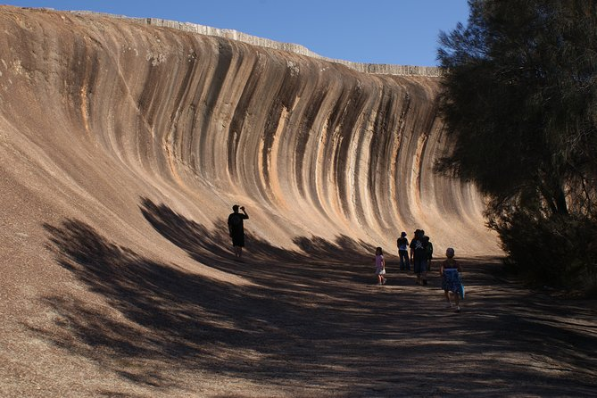 Wave Rock Pinnacles and Rottnest One Day Aeroplane Tour - Attractions Perth