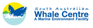 South Australian Whale Centre - Attractions Perth