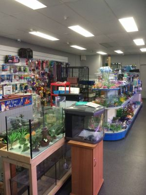 Nambour Pet Shop - Attractions Perth