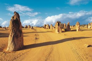 Pinnacles Desert Koalas and Sandboarding 4WD Day Tour from Perth - Attractions Perth