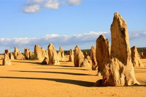 Pinnacles and Yanchep National Park Day Trip from Perth Including Lobster Shack Lunch and Sandboarding - Attractions Perth