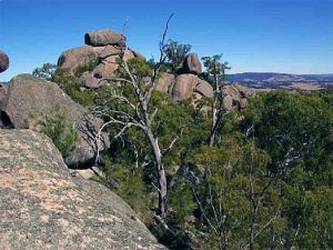 Evans Crown Nature Reserve - Attractions Perth