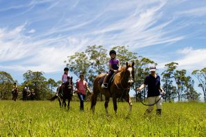 Port Macquarie Horse Riding Centre - Attractions Perth