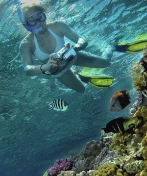 Calypso Reef Charters - Attractions Perth